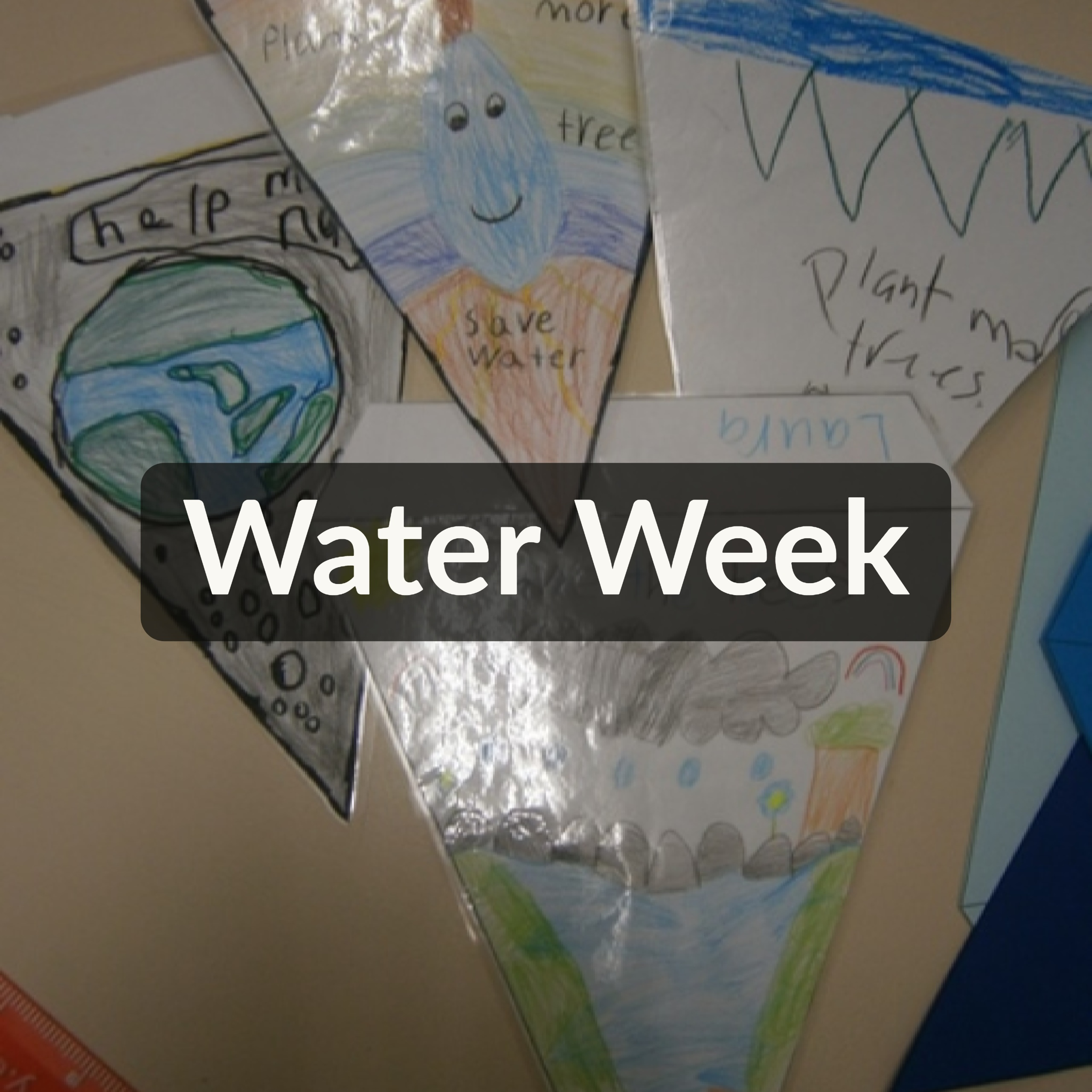 Water Week – Room 8