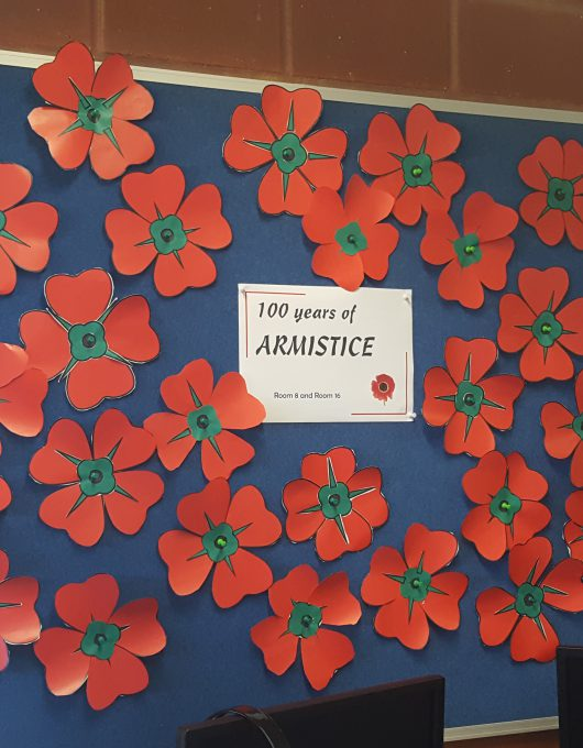 Room 8 & 16's poppies