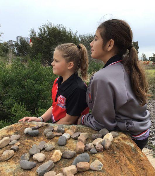 Chevron Playground Excursion