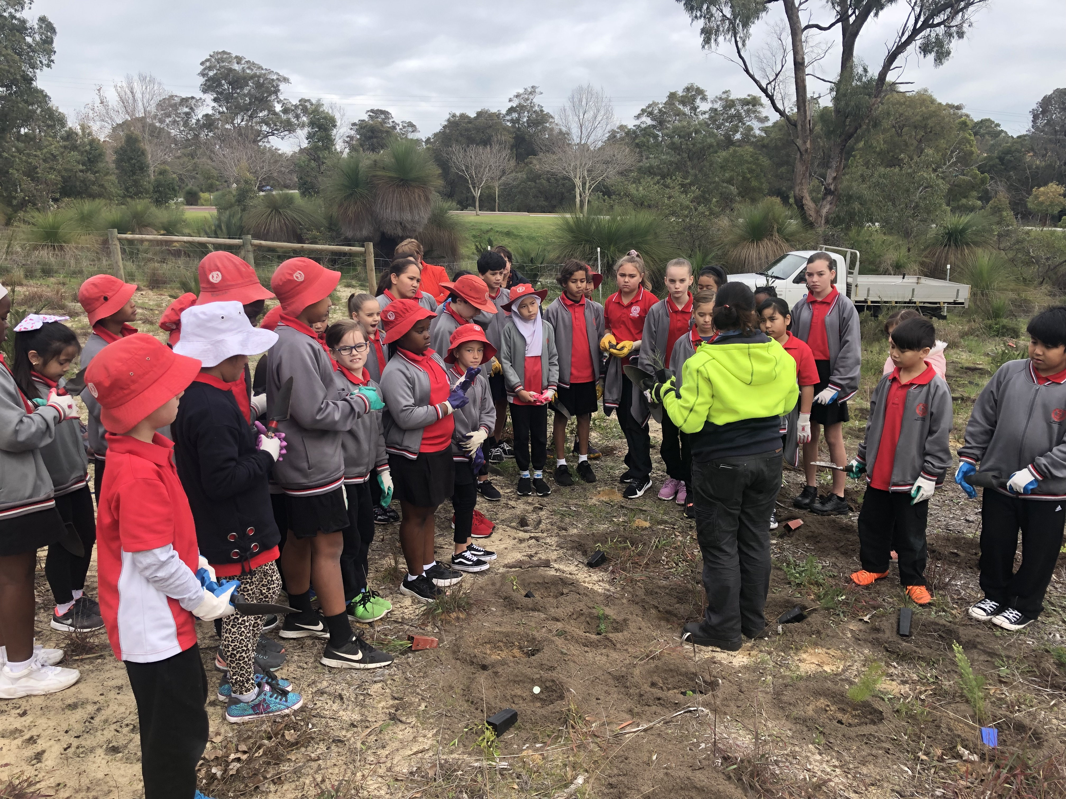 Tree Planting Bibra Lake