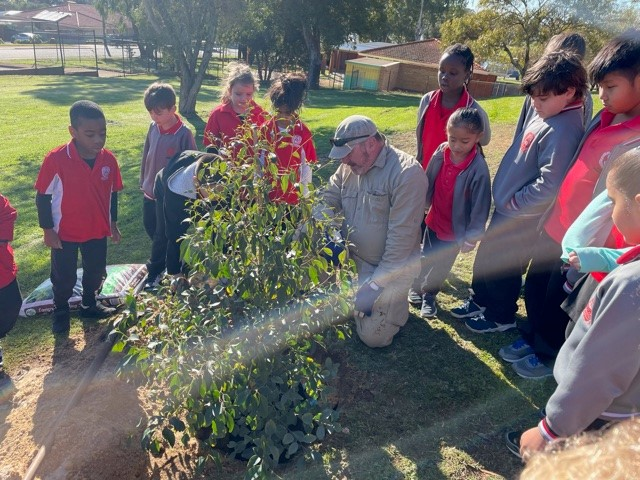 Spearwood Tree Day 2021